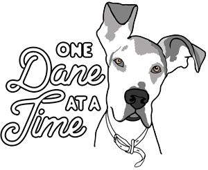 One Dane at a Time