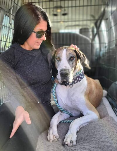 Whitney - One Dane at a Time